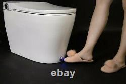 Elongated Toilet Seat Bidet, Smart Toilet, Heated Seat, Dryer, Self Clean USA